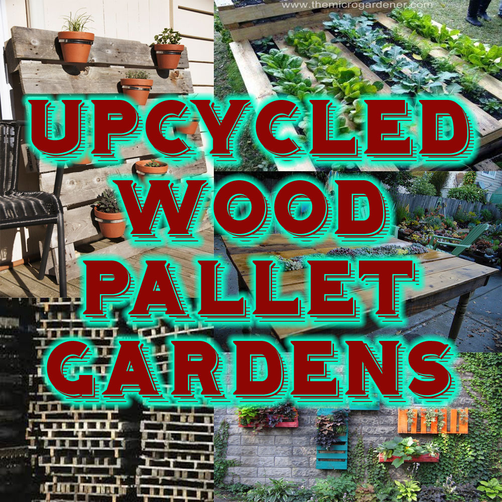 Upcycledpallets